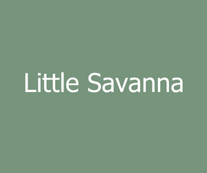Little Savanna